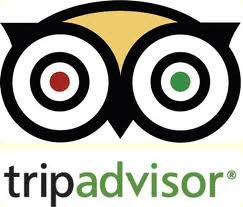 Travel business success or struggle with tripadvisor?